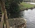River Test near Fullerton.jpg