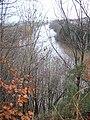 River Tweed - geograph.org.uk - 288674.jpg