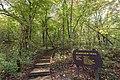 Riverview Trail - John A. Latsch State Park, Minnesota (36567731904).jpg