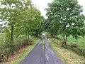 Road at Carrickleitrim - geograph.org.uk - 1505534.jpg