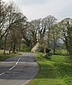 Road to Birstwith - geograph.org.uk - 1264797.jpg