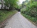 Road to Yardro - geograph.org.uk - 1550082.jpg