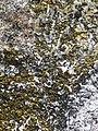 Rocks&foam.jpg