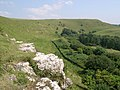 Rocky Outcrop Eggardon Hill - geograph.org.uk - 410107.jpg