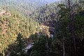 Rogue River and Forest, Rogue River-Siskiyou National Forest (36714159520).jpg
