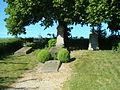 Rossach-berlichingen-gräber1.JPG