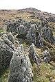 Rubha na Cille - geograph.org.uk - 1275035.jpg