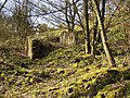 Ruin of Park Gate East, Dark Lane, Southowram - geograph.org.uk - 398085.jpg