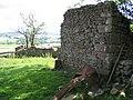 Ruins at Old Accraplatts - geograph.org.uk - 718140.jpg