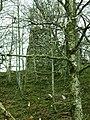 Ruins of Carnban Castle - geograph.org.uk - 566366.jpg