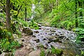 Ruisseau des Palanges (6).jpg