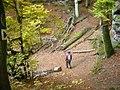 Rundwanderweg vom Ferschweiler Plateau - geo.hlipp.de - 14742.jpg