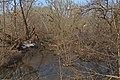 Ryazhsk (Ryazan Oblast) 03-2014 img2 - Aleshnya River.jpg