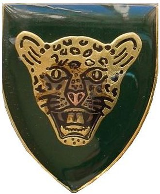 10 South African Infantry Battalion - Image: SADF 10 SAI emblem