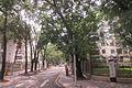 SZ 深圳 Shenzhen Bus 104 view 羅湖 Luohu 黃貝路 Huangbei Road green trees side lane June 2017 IX1 19.jpg