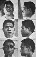 Samoan men faces Polynesian.png