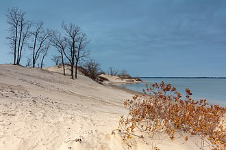 Sandbanks Provincial Park - View of the Sandbanks in the Fall showing the dunes and foliage before the snow fall.