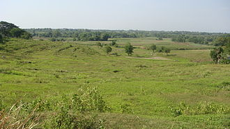 Grassland - A grassland in the Philippines