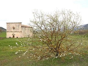 La chiesa della Madonna delle Grazie