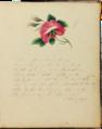 Sarah Mapps Douglass flower Cassey-album-p-9764-p9 lg.png