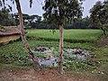 Satjelia Island Village in Sunderbans (24455874978).jpg