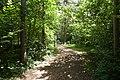 Saue, Harju County, Estonia - panoramio (53).jpg