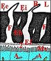 Schéma de la paroi du tube séminifère chez Zosis et Araniella.jpg