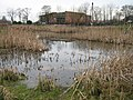 Scott Road wildlife pond - geograph.org.uk - 714043.jpg