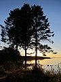 Sea Breeze Sunset 3 (11446131003).jpg