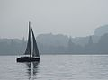 Segelboot-Vierwaldstättersee-Wald.jpg