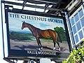 Sign for the Chestnut Horse, Easton - geograph.org.uk - 1328108.jpg