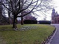 Signs of spring - geograph.org.uk - 1740544.jpg