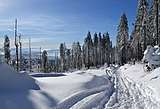 Silesian Beskids - hiking trial to Barania Góra peak 03.jpg
