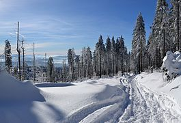 Silesian Beskids - hiking trial to Barania Góra peak 03.jpg