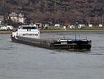 Singa, ENI 02317703 at the Rhine river pic1.JPG