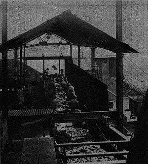 Singareni - Singareni Coal Mine in 1928.