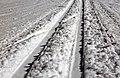 Ski track.jpg