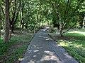 Sligo Creek Trail Kemp Mill 22.jpg