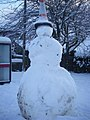 Snow, november 2010 029 (6538153907).jpg