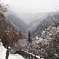 Snow - panoramio (26).jpg