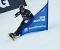 Snowboard LG FIS World Cup Moscow 2012 018.jpg