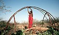 Somali women building a somali house.jpg