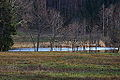 Sommersbergsee 78726 2014-11-15.JPG