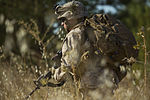 Special-Purpose Marine Air-Ground Task Force Crisis Response Fire-Team Challenge 140829-M-PA636-074.jpg