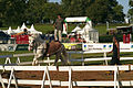 Spectacle équestre Bernard Quental Sofie Agnoux Nathalie Barot Mondial du percheron 2011 CL J Weber10 (23715550869).jpg