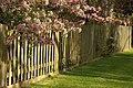 Spring in Epsom (7197762686).jpg