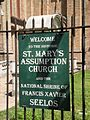 St. Mary's Assumption Church, New Orleans 03.JPG
