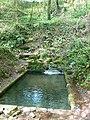 St Dyfnog's Well, Llanrhaeadr yng Nghinmeirch - geograph.org.uk - 791538.jpg