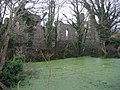 St Mary's Priory and the Pond - geograph.org.uk - 1198094.jpg