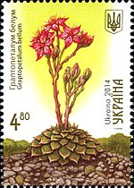Stamp of Ukraine s1382.jpg
